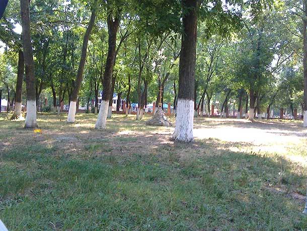 парк горького в ейске