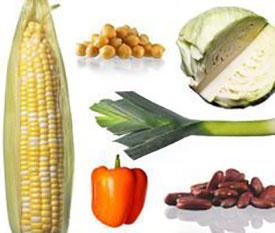 Что нельзя есть после родов кормящей маме: список основных продуктов