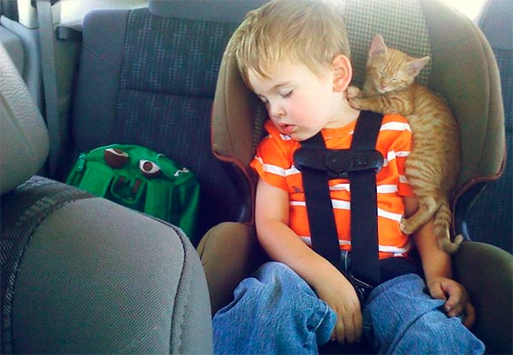 ребенок спит в машине