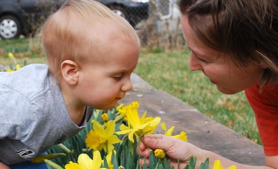 малыш нюхает цветы