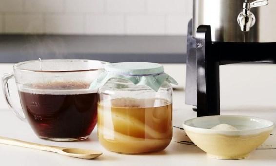 польза и вред чайного гриба