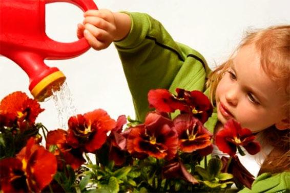 Как рассказать детям про цветы и показать им красоту мира вокруг